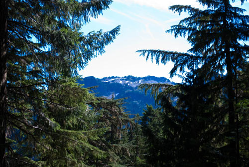 Photo of a view from the trail.